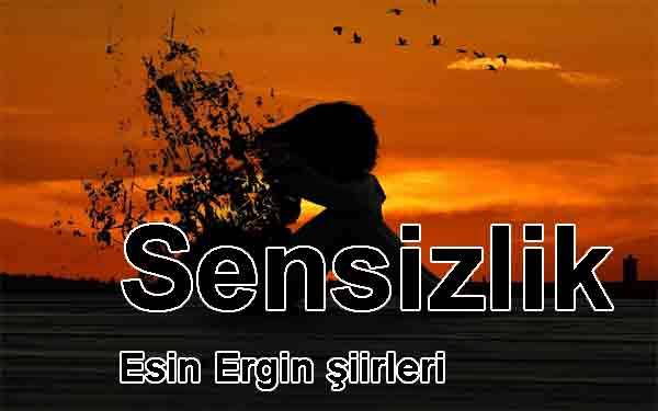 sensizlik şiir Esin Ergin Einsamkeit