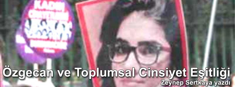 Özgecan Aslan cinayeti ve Toplumsal Cinsiyet Eşitliği Cinsiyet Eşitsizliği Yazan: Zeynep Sertkaya